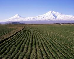 Biblical Mount Ararat